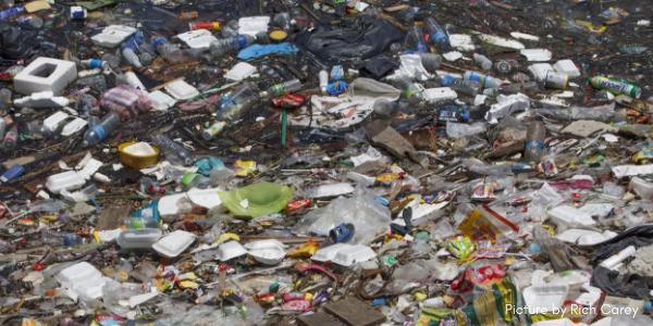 Elverdadero coste del plástico