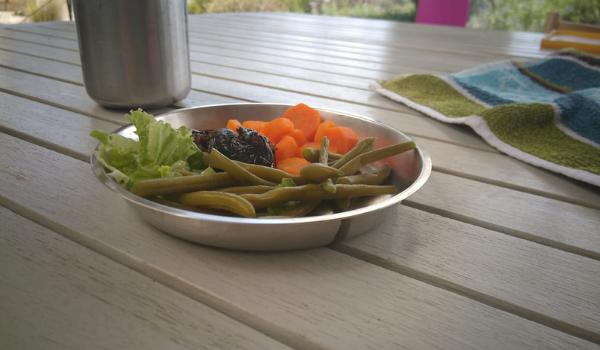 plato picnic metal