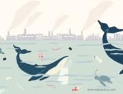 Residuos en el mar